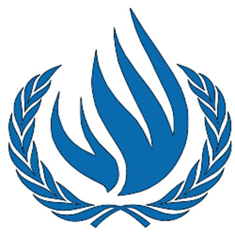 International protection of human rights essays
